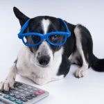 L. Brooke Witt and Brittany Duncan's Under-Utilized Pet Tax Deductions